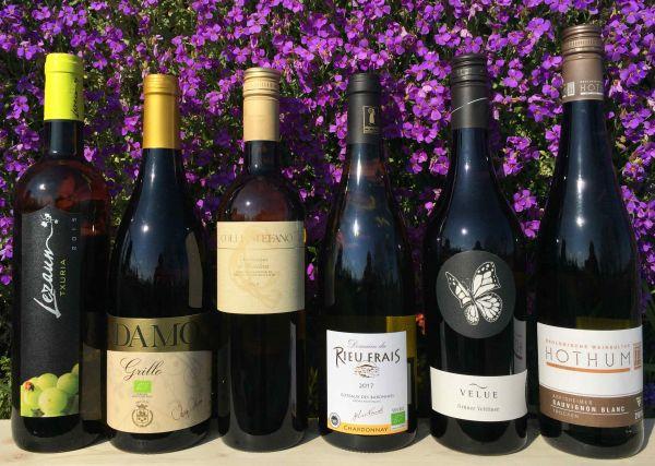 6 er Weinprobe Frühlings-Weissweine (6 x 0,75 l)