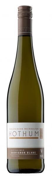 2020er Sauvignon Blanc, DQ trocken (0,75 l) OW Aspisheim
